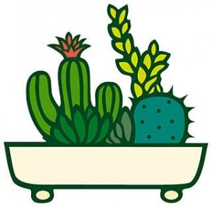 観葉植物は消耗品?