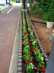 gardening000120
