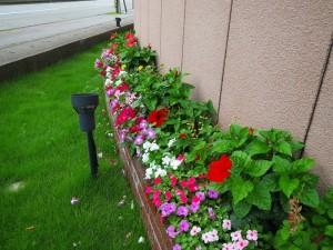gardening000136