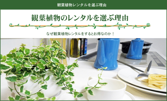 観葉植物レンタルを選ぶ理由