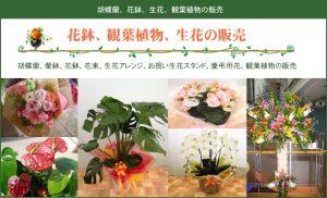 植物販売ページ