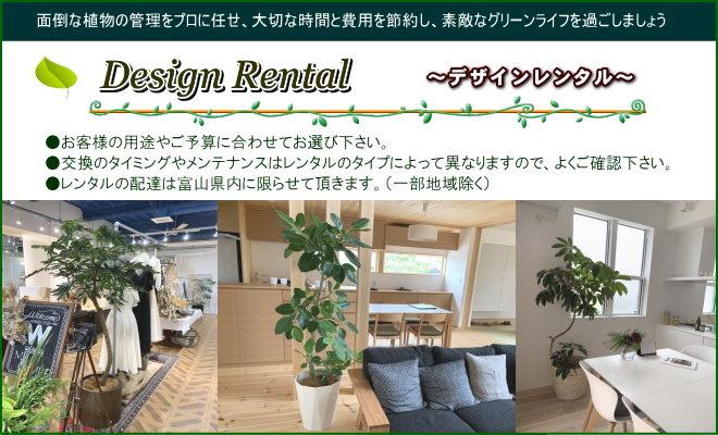 デザインレンタル